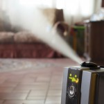Should I Buy a Humidifier or a Dehumidifier For My Home?
